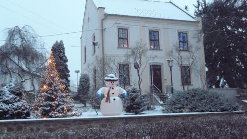 Lišany 29.12.2014