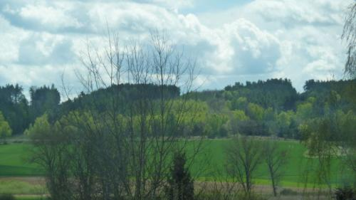 Lišany, jaro podHlavačovem